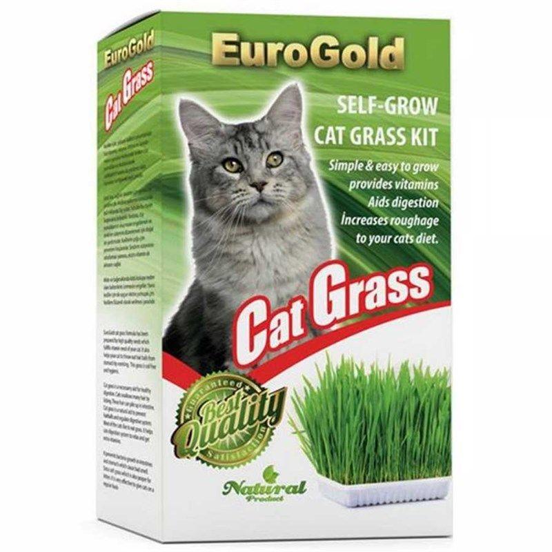 Euro Gold Cat Grass Kedi Çimi