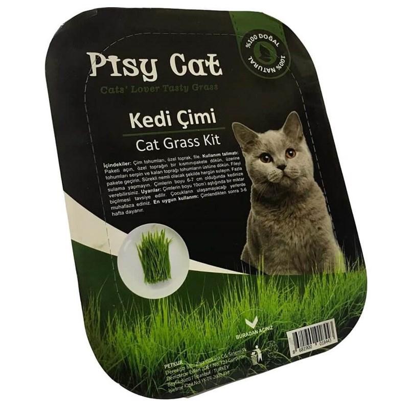 Pisy Cat Doğal Kedi Çimi