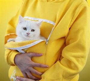 Kanguruu Sweet Pet Taşıma Kıyafeti Medium Sarı