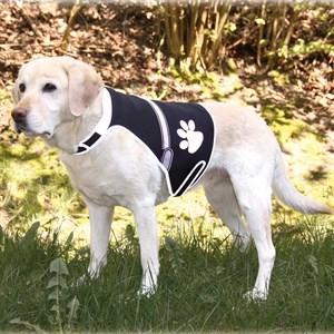 Trixie Işıklı Fosforlu Köpek Güvenlik Yeleği S,Siyah 36x58cm