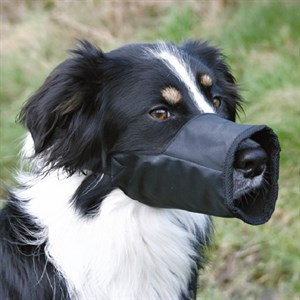 Trixie Köpek Ağızlık Large Kısa Siyah 24cm