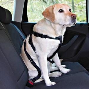 Trixie Köpek Emniyet Kemeri XL 80 - 110cm